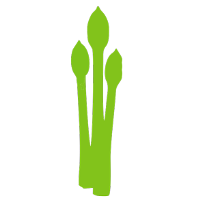 Цветы и лекарственные растения