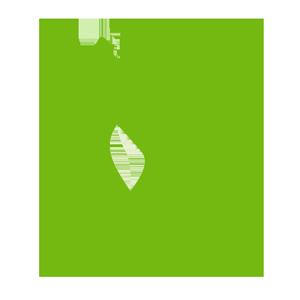Пряные травы и зелень